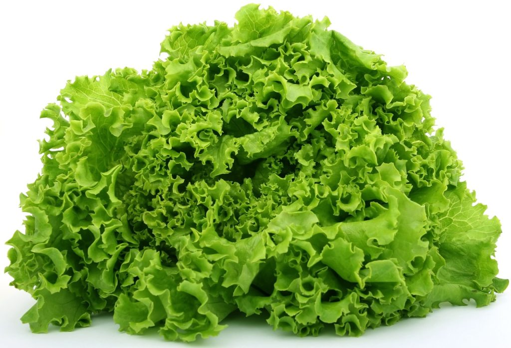 Adivinanzas de verduras para niños 16